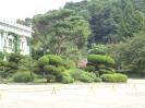 зеленая Корея