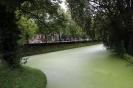 цветение канала в Нидерландах