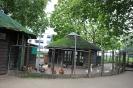 городской зоопарк в Вагенингене