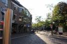 осеннее солнце Нидерландов