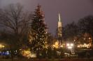 Новогоднее дерево перед рижской оперой