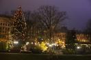 Рождественская елка в парке Риги