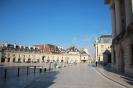 Dijon_26