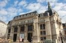 Dijon_33